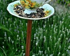 Make A DIY Teacup Birdfeeder :: Hometalk