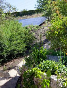 Gisele Bündchen's Green-Living Tips Photos   Architectural Digest