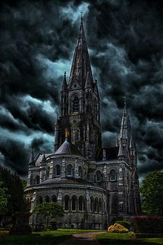 Cathedral in Ireland. So much history. Places To Travel, Places To See, Castle Ruins, Art And Architecture, Barcelona Cathedral, Sci Fi, To Go, Around The Worlds, Europe