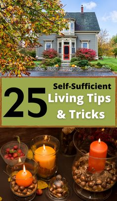 """Are you ready to be more self-sufficient? Not sure where to start? I've got some answers in """"25 Self-Sufficient Living Tips and Tricks""""! Get started being more sustainable today!"""