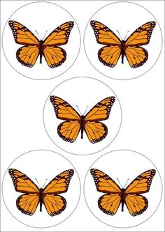 Transitional Kindergarten, Homemade Stickers, Crafts For Kids, Arts And Crafts, School Themes, Classroom Design, Butterfly Flowers, Adult Coloring Pages, Bugs