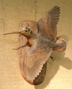 FF_flying_woodcock_f.jpg (362×450)