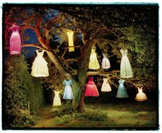 Tim Walker 02 720x593 Tim Walker  photographie bonus art
