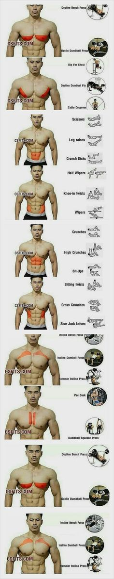 Gym Workout Chart, Ab Core Workout, Gym Workout Videos, Abs Workout Routines, Gym Workout For Beginners, Daily Routines, Triceps Workout, Gym Workouts For Men, Weight Training Workouts