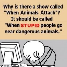 haha yes stop blaming the animals for snapping when you bother them! Leave the poor things alone.