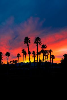 """Sunset in Palm Desert, California and if someone """"keeps"""" you awake, the sunrises are spectacular, too."""