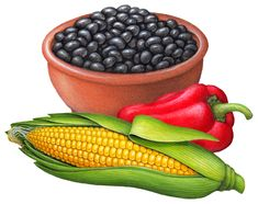 Food illustration of a bowl of black beans with an ear of corn, and a red chili pepper.