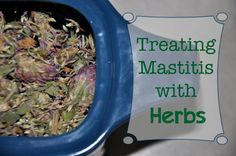 Treating Mastitis with Herbs  - BreastfeedingPlace.com #naturalremedies #nursing #baby