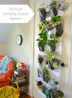 All Time Best Tricks: Modern Backyard Garden Window backyard garden wall front yards. Indoor Planters, Concrete Planters, Hanging Planters, Indoor Garden, Diy Planters, Diy Hanging, Succulent Planters, Outdoor Gardens, Shoe Caddy