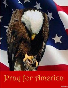 Pray for America - Yes!!