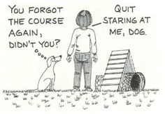 Dog Quotes / Agility