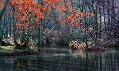 ***Autumn Quiet (Bosnia and Herzegovina) by Mevludin Sejmenovic on 500px