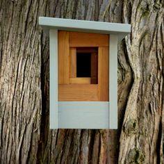 Ce nichoir contemporain fait de cèdre clair massif. Lavant a une huile de teck finition qui fait ressortir le spectre de la couleur naturelle du