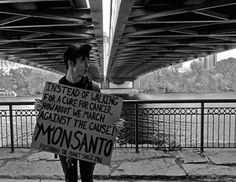 MONSANTO = MONSATAN! Killing Us Slowly One Bite At A Time!  HELL NO GMO'S! WE MUST DEMAND A WORLD WIDE BAN ON GENETICALLY MODIFIED ORGANISMS (Pure Poison) CONTAMINATING OUR ENTIRE FOOD SUPPLY & ABOLISH MONSANTO'S EXSISTENCE ENTIRERALLY! ❤