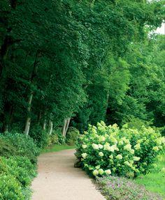Garden Design of Madison Cox Garden Design of Madison Cox Landscape Plans, Landscape Design, Garden Design, Amazing Gardens, Beautiful Gardens, Beautiful Things, Front Yard Hedges, Hedging Plants, Shrubs