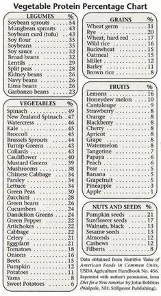 Vegan foods protein chart! Know how much protein you are getting from your fruits, veggies, grains, beans, and nuts/seeds!