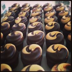 Chocolate Peanut Butter Twist cupcakes at Georgetown Cupcake Los Angeles