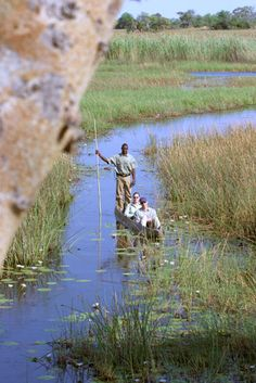Pom Pom Camp is located on Pom Pom Island in a private concession situated in the heart of the Okavango Delta and on the head waters of the Xudum river system. Okavango Delta, Game Reserve, Wilderness, Scenery, Camping, Memories, River, Island, Photos