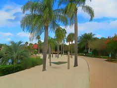 CSR beach area