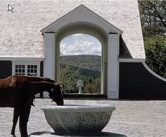 Awesome horse trough!