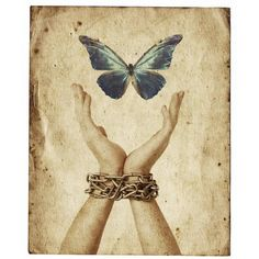 Freedom A Charmed Yogi ❤ liked on Polyvore featuring backgrounds, butterflies, other and art