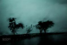 chuvas através do vidro - null