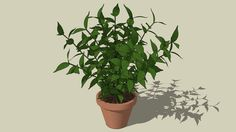 Large preview of 3D Model of plant