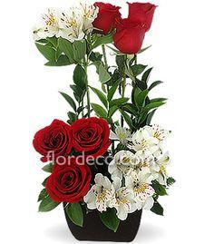 Red roses - Rosas rojas