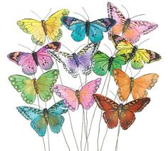 Assorted Colorful Butterfly Decor Picks