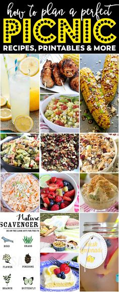 The BEST Summer Picnic Ideas: recipes, printables, and more! This is the ultimate list for how to plan the perfect picnic.