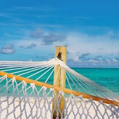 Hammock for #VacaYourWay inspiration!
