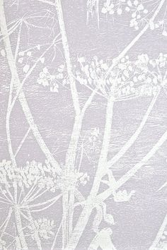 Cow Parsley Restyled Wallpaper Lilac grey wallpaper with white cow parsley print.