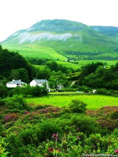 Ireland--So lush and green our only abroad goal and destination!  Someday!