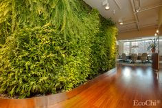 BRINGING THE OUTDOORS IN: Eco-conscious interior designer Debra Duneier incorporated a verdant living wall, nature murals and photographs, and even a porch-style swing into the design of McKissack & McKissack's New York City office, creating a calming, grounding workspace for the company's employees.