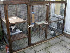 Bea's Book Nook: Cat Thursday - Cat Real Estate