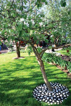 Puun istutus puutarhaan. Puun alustat on katettava mahdollisimman hyvin vettä ja kaasuja läpäisevällä materiaalilla.
