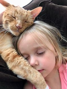 Orange cat: love my little human Orange cat: love my little human Orange Cat Ideas of Orange Cat Orange cat: love my little human The post Orange cat: love my little human appeared first on Katzen. Animals For Kids, Animals And Pets, Baby Animals, Funny Animals, Cute Animals, Smiling Animals, Animals Images, Funny Cats, Cute Kittens