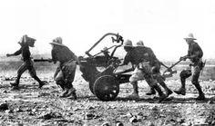 Mitragliera Breda da 20/65, Regio Esercito WWII - pin by Paolo Marzioli