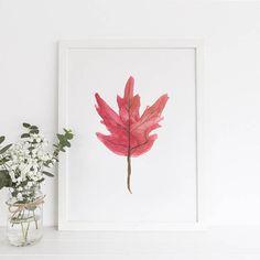 Canadian Maple Leaf Maple Leaf Leaf Wall Art Maple Leaf