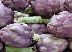 Deborah Lawrenson: purple artichokes