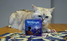 Od kilku lat koty są stałym elementem naszego życia i ciężko nam sobie wyobrazić dom bez brykającej w rytm Hopki Galopki Khaleesi lub łażącego krok w krok za nami i błagającego o głaskanie Mordimera. Do tej pory jakoś na mojej drodze nie trafiłem na interesujące gry z kotami, aż do tego roku, który obrodził od …