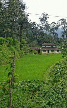 Village Photography, Landscape Photography, Nature Photography, Kerala Architecture, Sacred Architecture, Amazing India, Amazing Nature, Wonderful Places, Beautiful Places