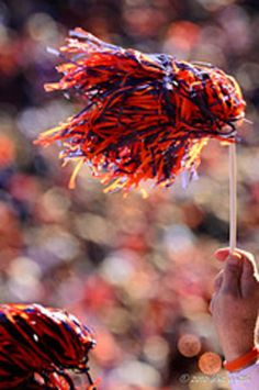 Fight on you orange and blue, Go! Go! Go!