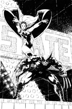 Storm & Wolverine by Ryan Stegman