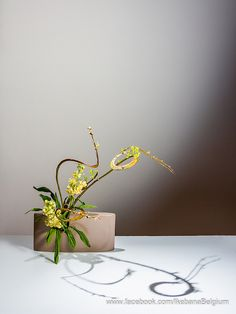 ~~Sunrise by Ben Huybrechts ~ Ikebana Floral Art by Ilse Beunen~~ Ikebana Flower Arrangement, Ikebana Arrangements, Beautiful Flower Arrangements, Most Beautiful Flowers, Floral Arrangements, Art Floral, Floral Design, Japanese Flowers, Japanese Art