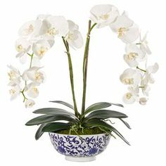 """Bring organic elegance to your decor with this lovely faux orchid arrangement from Natural Decorations, Inc., nestled in a porcelain bowl for classic appeal. Made in the USA.  Product: Faux floral arrangementConstruction Material: Fabric, polyester and porcelainColor: Blue, green and whiteFeatures:  Handmade in the USAIncludes faux orchidsDimensions: 24"""" H x 21"""" W x 16"""" D"""