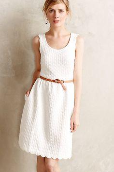 pretty scalloped dress
