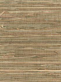 - Bamboo And Grass Wallpaper Bamboo Grass, Motorhome Interior, Bamboo Bathroom, Decor Ideas, Interior Design, Wallpaper, Home Decor, Nest Design, Decoration Home