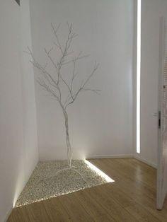 arbol en el pasillo