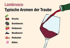 Von wegen Billigwein! Lambrusco ist längst eine italienische Speziallität. Alles, was Sie über den Perlwein, seine Aromen und Herkunft wissen müssen...  https://www.weinbilly.de/lambrusco